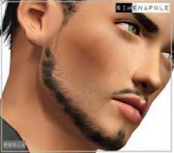 beard5_22